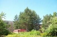Фотогалерея нашего посёлка