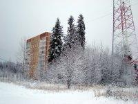 Большая зимняя прогулка 27 ноября 2010 года